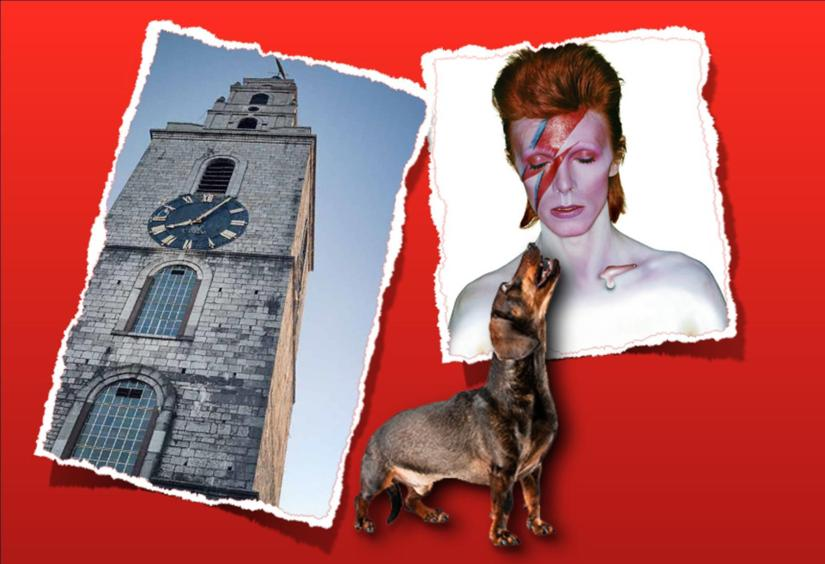 Bowie on BlarneyStreet!